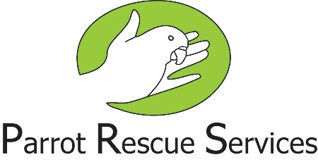 Parrot Adoption and Rescue
