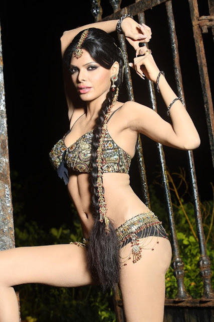 Sherlyn Chopra Kamasutra 3D Launch Hot photos