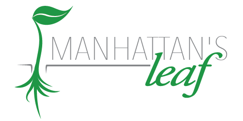 Manhattan's Leaf