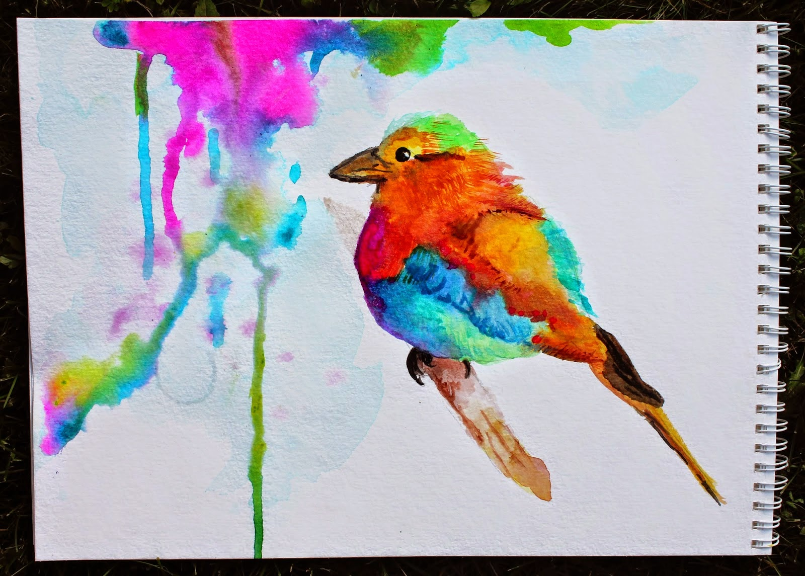 Bird Crafts For Children - Danielle's Place of Crafts and Bird pictures to paint