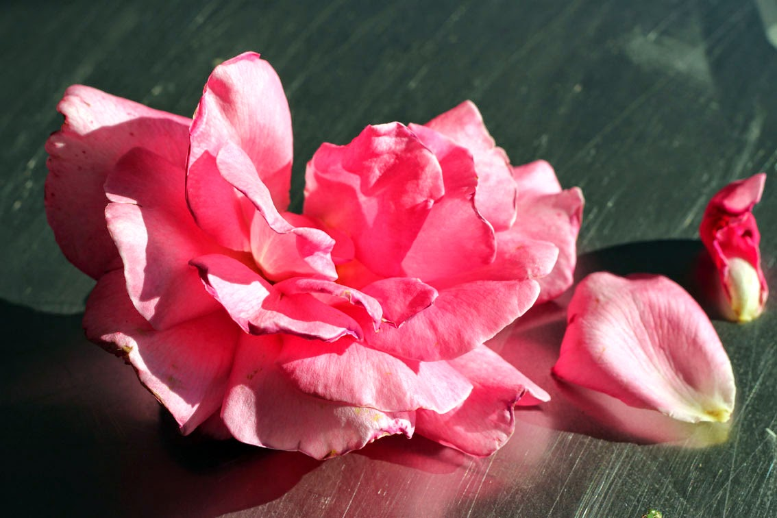 Tend rose petal and jasmine flower jam rose petal and jasmine flower jam izmirmasajfo