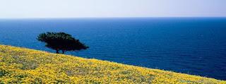 Couverture  Facebook HD de beaux paysage