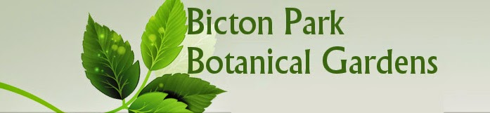Bicton Park Botanical Gardens Official Site