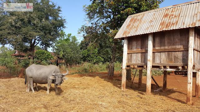 Thăm làng Phun - Pleikep dân tộc Jarai ở Gia Lai