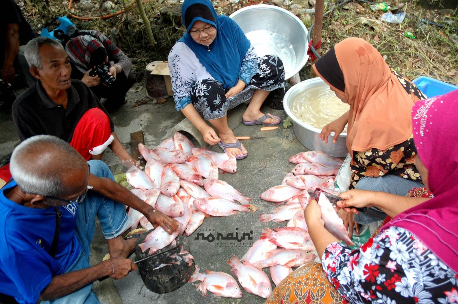 Ikan Talapia Bakar Di Homestay Kg. Beng