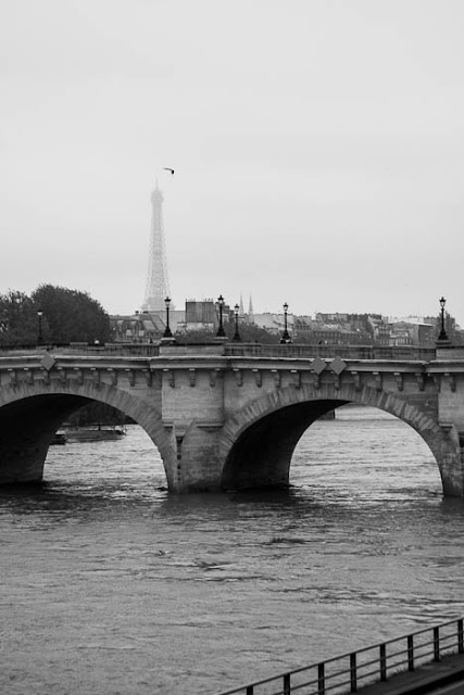 Paris bridge and Eiffel Tower