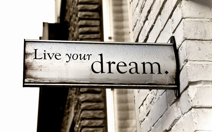 Yes, We Rise  What do you do when your dream is in jeopardy?