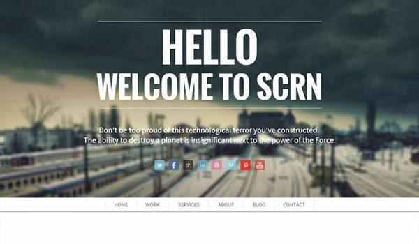 SCRN-single-page-portfolio-theme