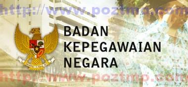 www.BKN.Go.Id logo - Data Tenaga Honorer Lolos CPNS 2012