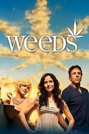 Assistir Weeds 8 Temporada Online Dublado e Legendado