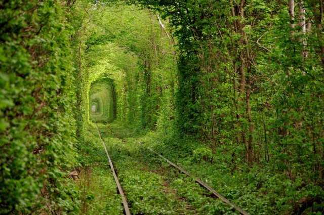 tunnels created by nature