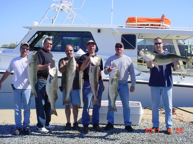 Saltwater report chesapeake bay fishing charters for Chesapeake beach fishing charters