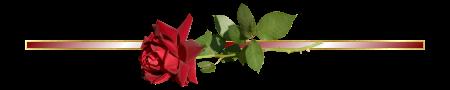 0_12-sorv-piros_rozsa.png
