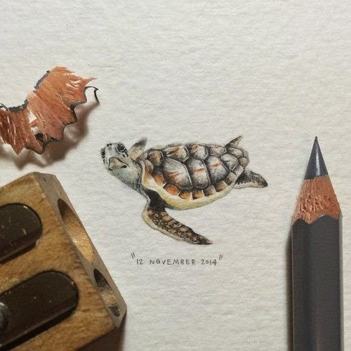 06-Loggerhead-Turtle-Lorraine-Loots-Miniature-Paintings-Commemorating-Special-Occasions-www-designstack-co