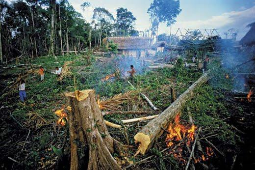 Examples Of Natural Resources Being Destroyed