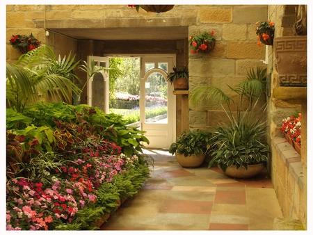 La jardineria un momento de relajaci n - Plantas de interior baratas ...