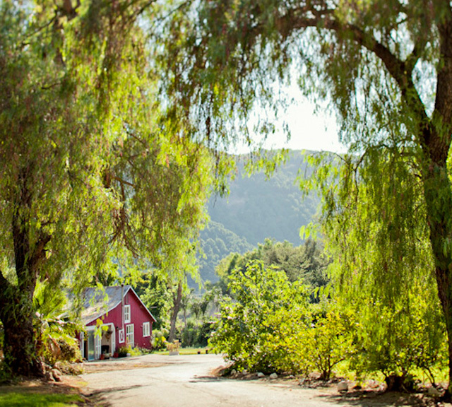 whispering meadows san diego wedding venue