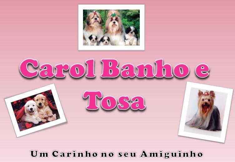 Carol Banho e Tosa
