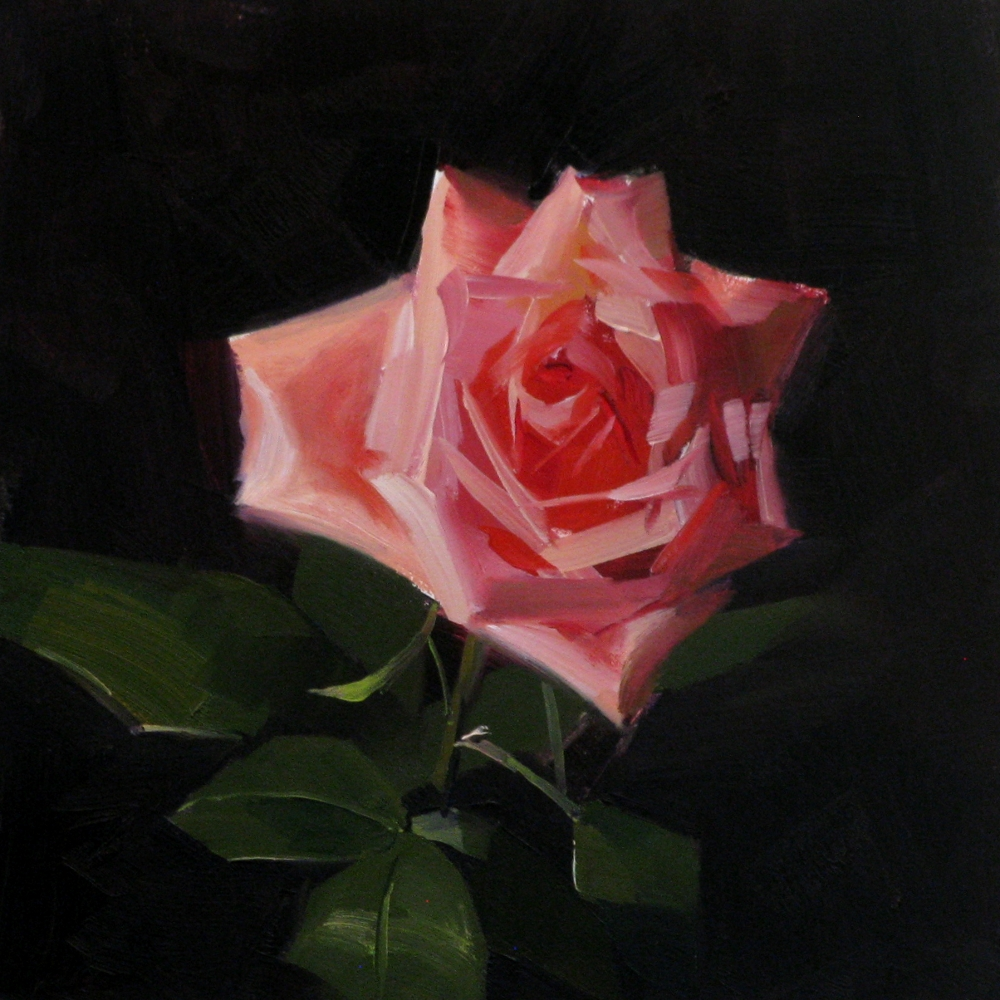 A Red, Red Rose by Robert Burns: Summary & Analysis ...