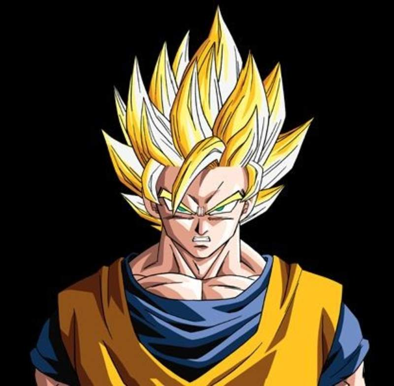 Goku   232 di casa da Renato Coiffeur Goku