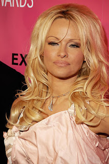 Celebrities Who Went Bankrupt, Pamela Anderson