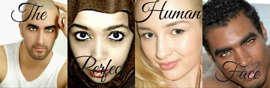 The Perfect Human Face