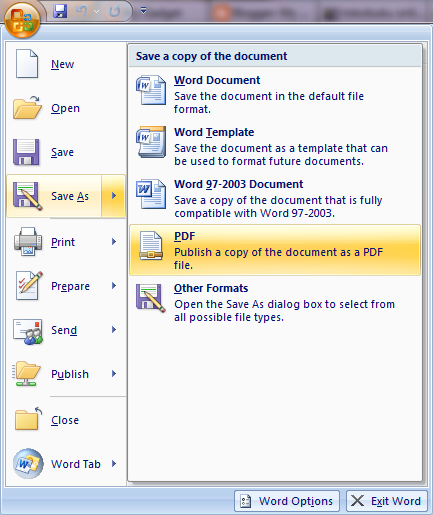 microsoft office 2007 save as pdf or xps plugin