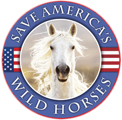Saving America's Wild Horses