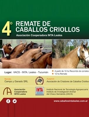 4º Remate Caballos Criollos
