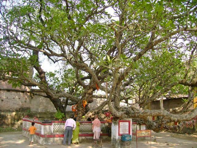 Mayapur - Chand Kazi Samadhi