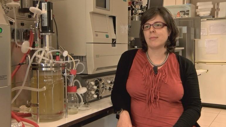 Cristina Brito trabalha com modelos de fígado, cancro e sistema nervoso