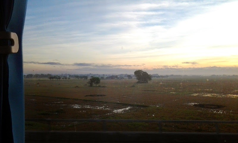 Bulacan sunrise rice fields