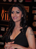 Mamata Mohandas at IIFA Utsavam-cover-photo