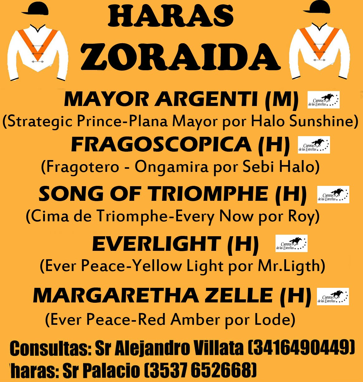 HS ZORAIDA 2