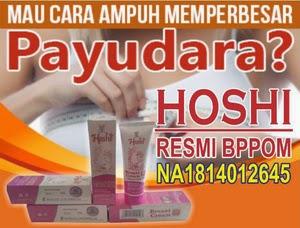 HOSHI enlargement Breast Cream