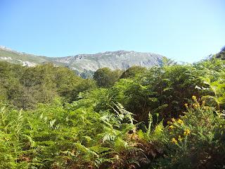 Sobrescobio, Ruta del Alba, vista desde la vega de Llaimo