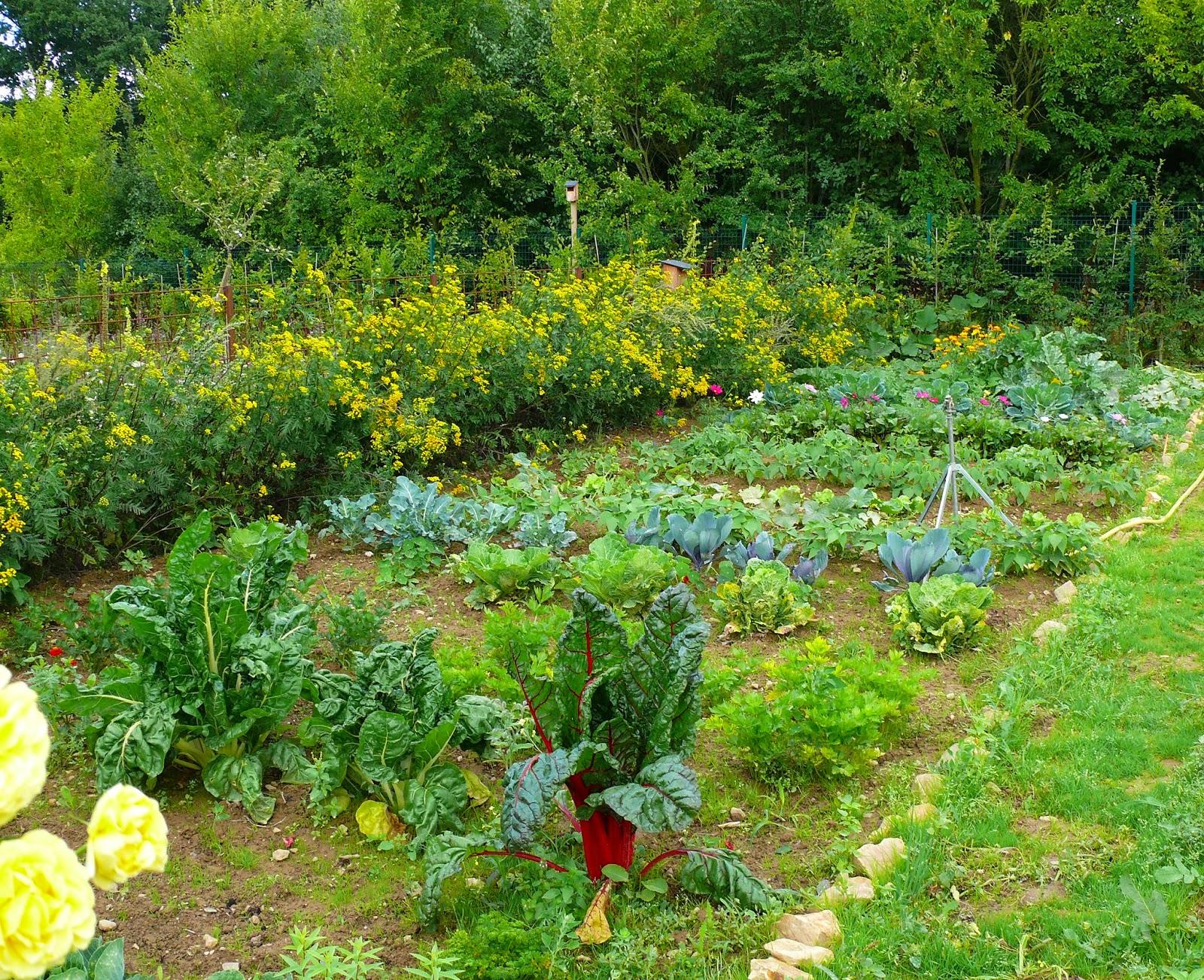 Projet un jardin sur le campus universitaire de lille 1 for Jardin universitaire