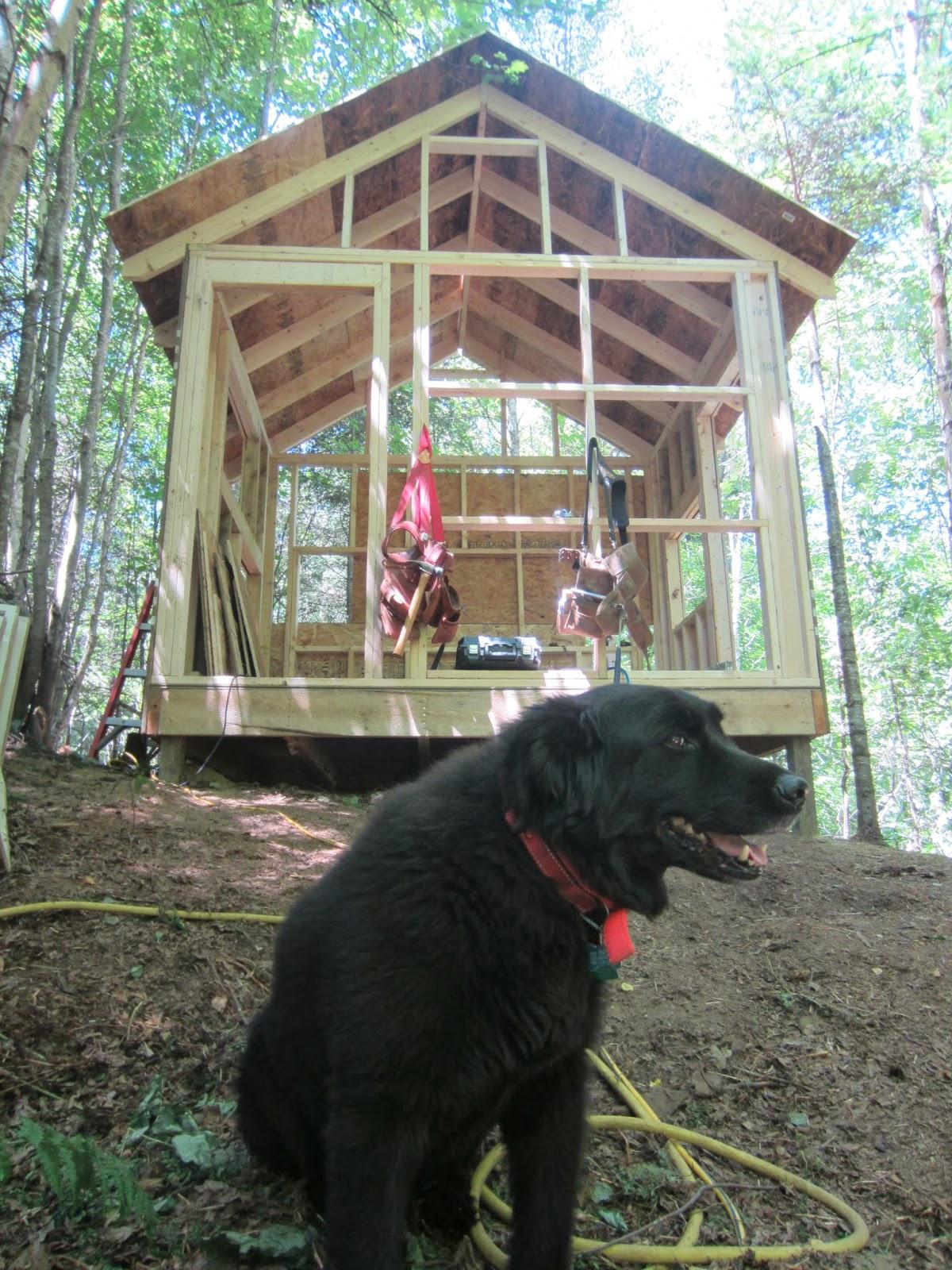 Vermont cottage house project