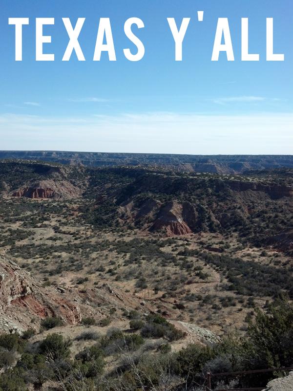 Rebel Road Company | Texas Y'All