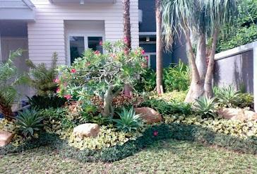 desain taman minimalis   pembuatan kolam hias batu alam
