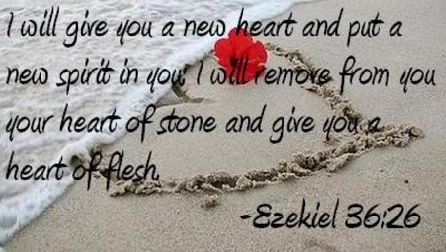 Transforming Hearts