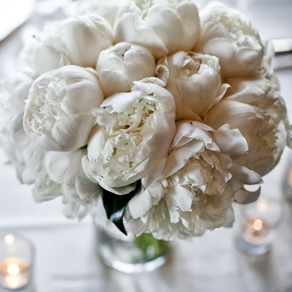 beautiful blooming white peony bouquet
