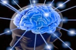8 Cara Efektif Untuk Meningkatkan Daya Ingat