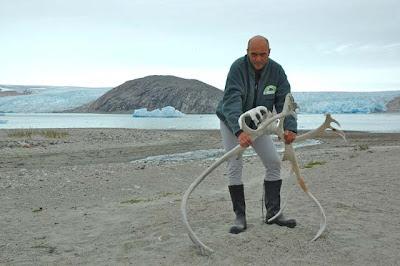 Esteban Capdevila en Groenlandia. Blog Esteban Capdevila
