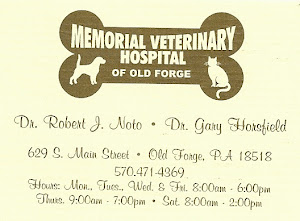 Memorial Veterinary Hospital of Old Forge