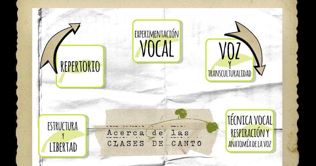 Único Diagrama De La Anatomía Vocal Motivo - Anatomía de Las ...