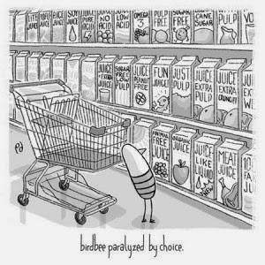 agony of choice