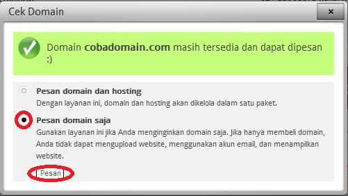 lakukan pemesanan nama domain saja