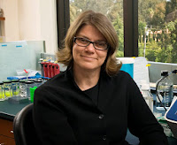 Stanford Loses Star Stem Cell Researcher to Montana State University
