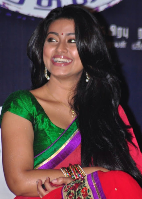 sneha spicy saree inages_unseen hot photoshoot